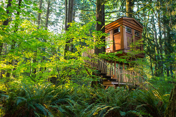 Treehouse Hotels Around the World