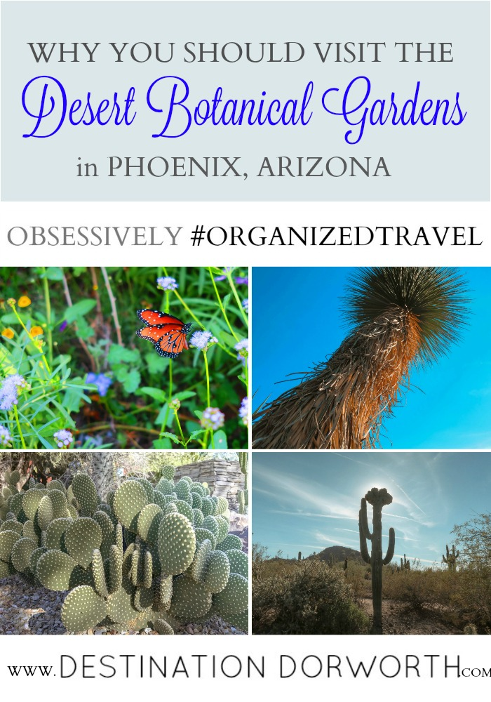 Desert Botanical Garden A Perfect Place For Plant Enthusiasts Who Love Art Chocolatour With Doreen Pendgracs Chocolate Adventurist And Wizard Of Words